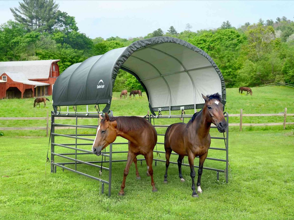 Shelter Logic tent canopy 13.7 sqm-0
